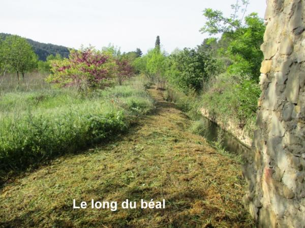 Le long