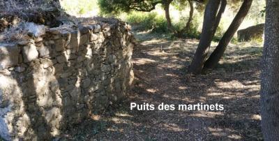 Puits martinets