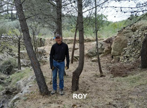 Roy 2